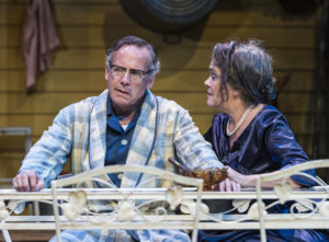 Geoff Elliott and Deborah Strang in ANW's production of All My Sons. Photo by Craig Schwartz.
